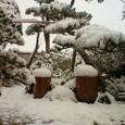 大雪注意!☆
