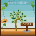 Halloween☆1♪