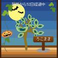 Halloween☆2♪