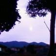 夕方の月♪